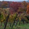 03 Fall at Rappahannock