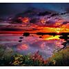 Lubec Sunrise