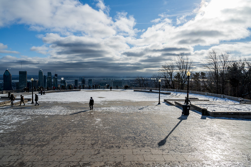 Winterscape in Montreal