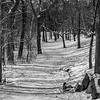 Snowy Hiking Path