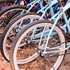 Bicycles - MarionE 09