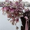 cherryblossums-kelbergr-01 jpg-11