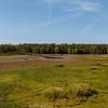 Huntley Meadows - BradshawG - IMG_9676-Pano-1