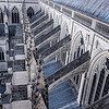 NATL CATHEDRAL - MarionE -121