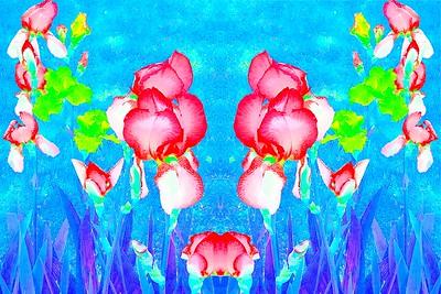 20210614 - WildbloodM Iris Reflection  578