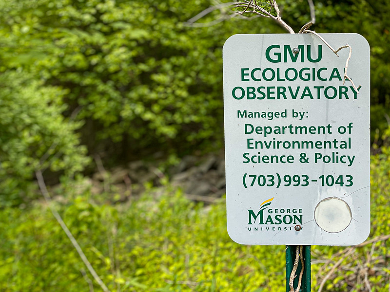GMU Campus - SchretterS-6