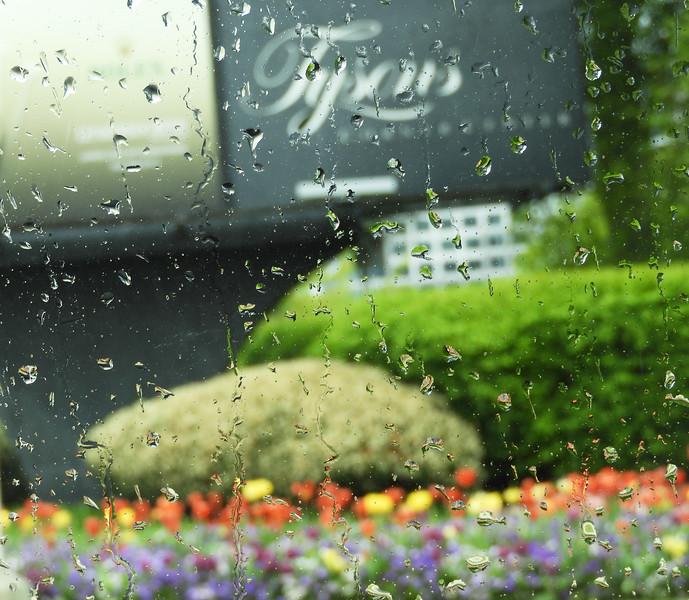 Rain Again - Rubinh - 9462