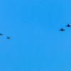 20200918 - BradshawG - Blue Angel DevSeq - 030 - IMG_9750-dnai-viv2-viv2 - w1800
