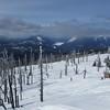 Outlook from Sugarloaf Peak, WA.