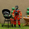 Barbecue having a barbeque
