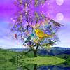 11x14Lovebird_tree_2inc