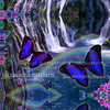 BarneyFallsVision11x14_2in