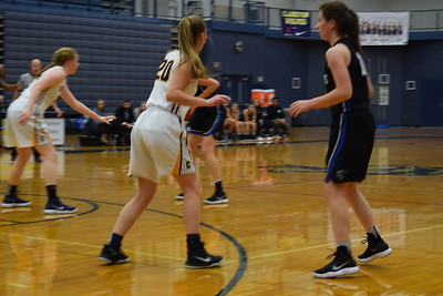 The Clarkston Wolves topped the Royal Oak Ravens, 37-28, on Friday night. (Photo by Paula Pasche