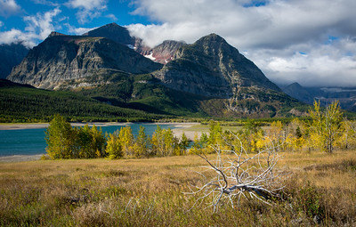 Fall color in Glacier Park