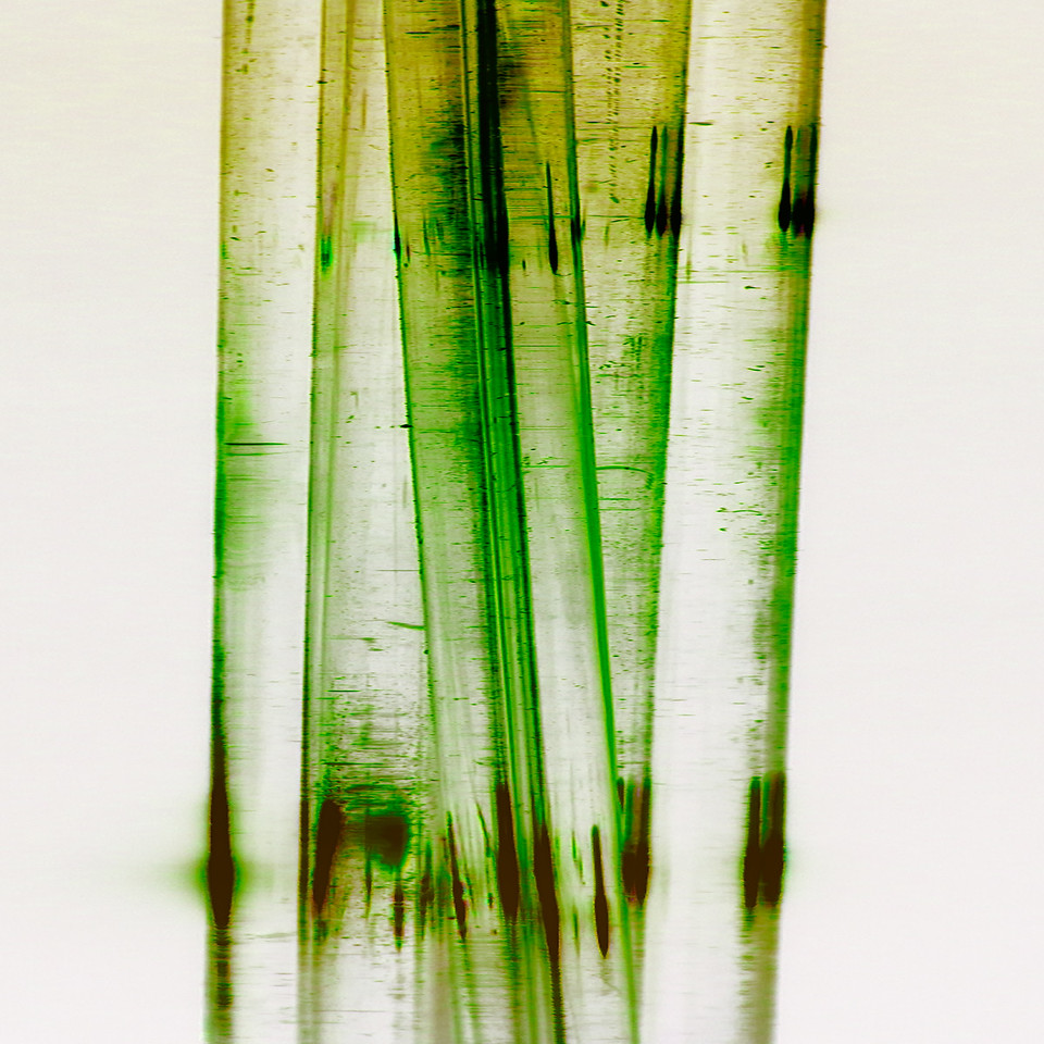 Coloured Glass 1~10424-1ins.