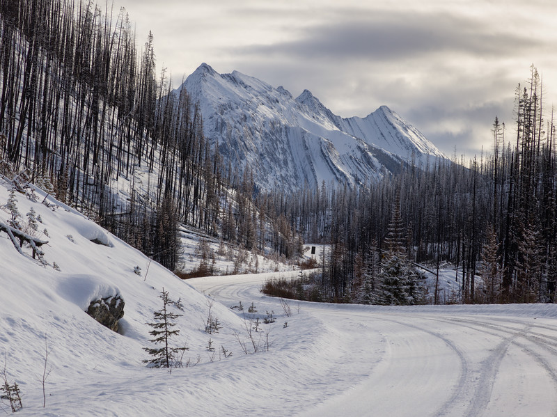 Maligne Lake Road