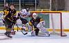 Lynx Goal Attack