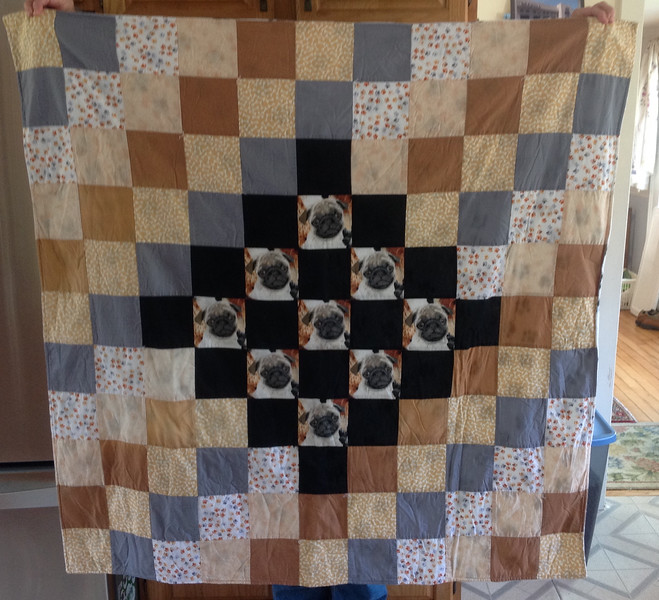 """Lovely handmade quilt 48"""" x  48"""". Backing is a soft white fleece with black paw prints.<br /> <br /> Winner pays shipping.<br /> <br /> Starting bid $50"""
