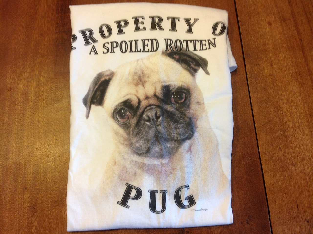 """""""Spoiled Rotten Pug""""  Hanes T-Shirt - Size L<br /> <br /> Winner pays shipping<br /> <br /> Starting bid $5"""