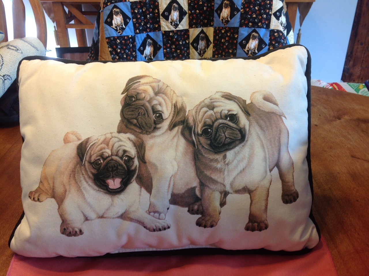 """Gently used pillow 17"""" x 12""""<br /> <br /> Winner pays shipping<br /> <br /> Starting bid $3"""