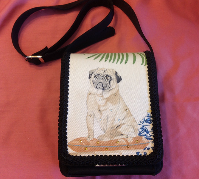 "Liz Soto Ladies bag 7 1/2"" x 5 1/2"". Very cute.<br /> <br /> Winner pays shipping<br /> <br /> Starting bid $15"