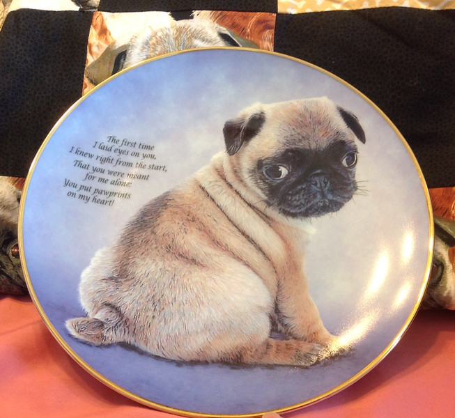 """Danbury Mint """"Pawprints on My Heart""""  from the Devoted Pugs collection. Plate #B3728. Plate is 8"""" in diameter.<br /> <br /> Winner pays shipping.<br /> <br /> Starting bid $10"""