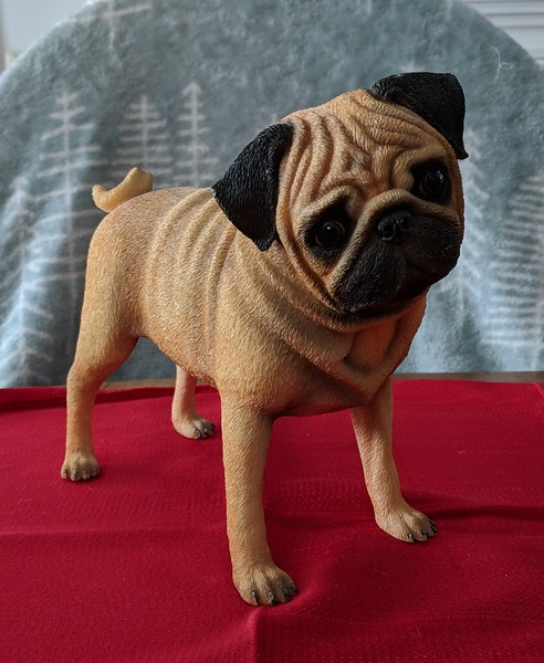 Danbury Mint Playful Pug - Fawn