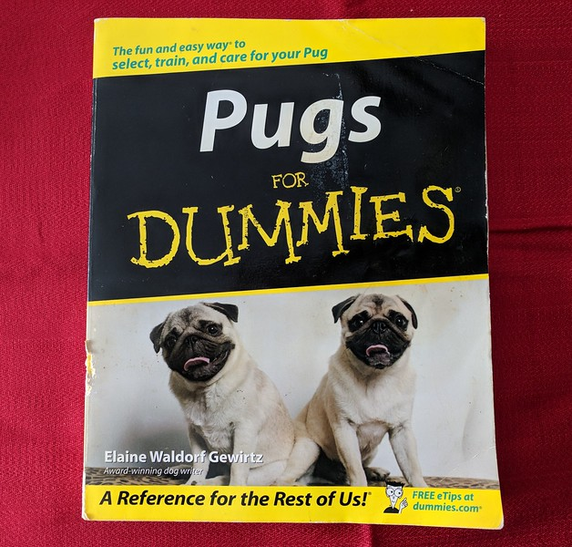 Pugs for Dummies Book - Damaged (chewed)