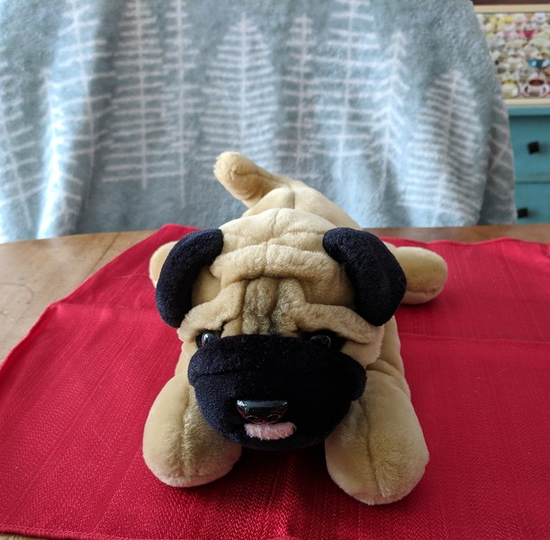 Sales Tent - Aurora Pug with Tongue