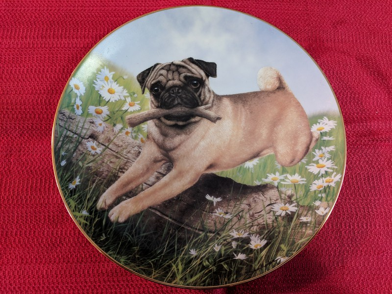 Danbury Mint Pug in Play