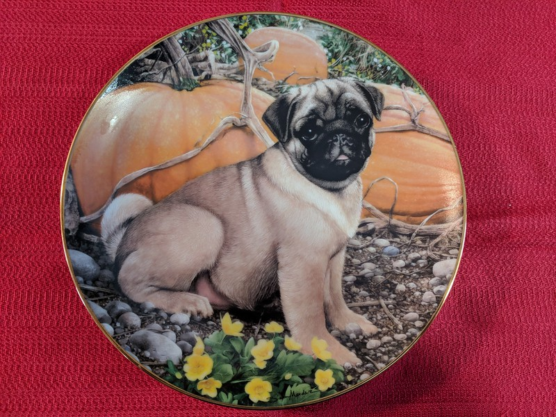 Sales Tent - Danbury Mint Pumpkin Patch Pug
