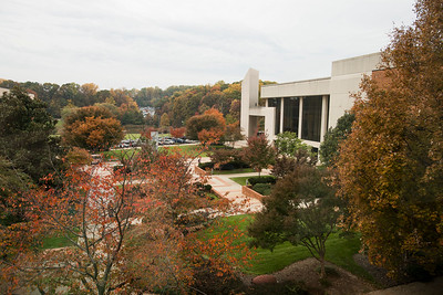 Center For the Arts