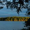 The shoreline on Long Lake. Photo by Lynn Huffman.
