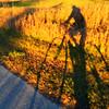 A bonus bike ride in November on the TART trail. Photo by Meg Benner.