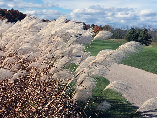 Fall at A-Ga-Ming Golf Course. Photo by Meganne McCardel.