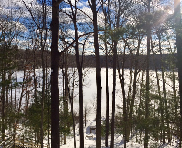 Lots of sunshine in Lake Ann on Sandford Lake. Photo by Jan Zolik.