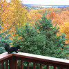 A black squirrel dines on a North Lake Leelanau deck. Photo by Thomas J. Newhouse.