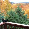 A black squirrel dines on a North Lake Leelanau deck. Photo by Thomas J. Newhouse.