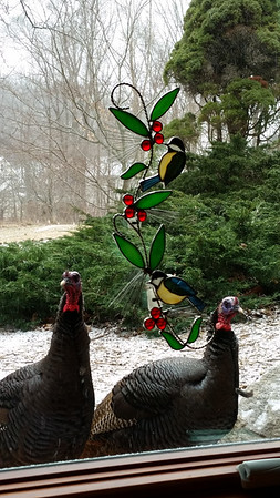 Turkeys checking their image in a window. Photo by Kathie Riess.