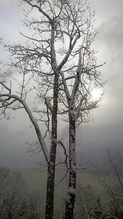 Winter sun. Photo by JJ Johnson.