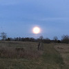 Waxing gibbous moon rising over the back field before December snowfall. Photo by Vicky Arlt.