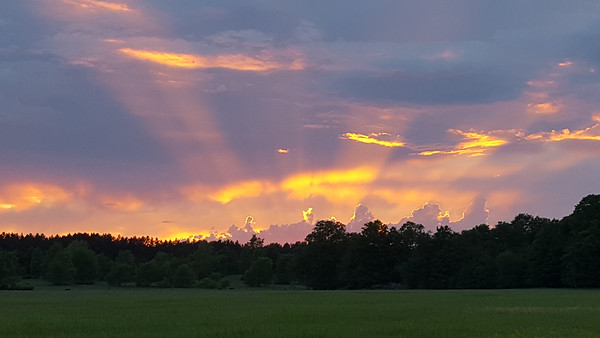 Sunset from Gray Centennial Farm in Lake Ann. Photo by Brooke Gray.