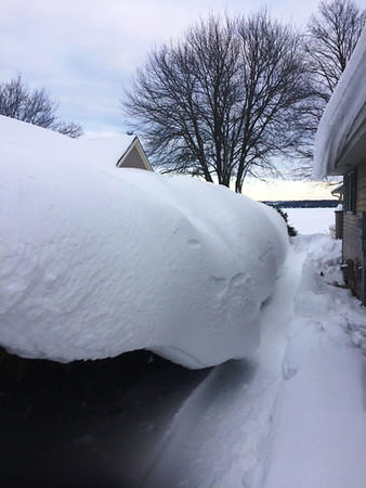 A thick blanket of snow on a Cedar hedge in Lake Leelanau. Photo by Terry Herman.