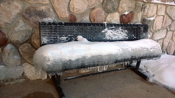 Cold cushion. Photo by Don Montie.
