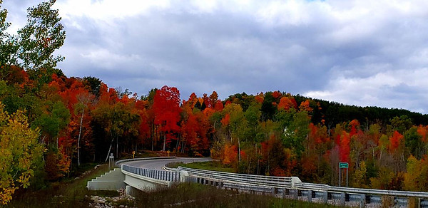 The Cass Road bridge under autumn cover. Photo by Christy Penrod.