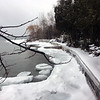 "Ice ""rounds"" on Suttons Bay. Photo by Janet Alpers."