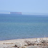 Freighter mirage on Lake Superior. Photo by Connie Fasel.