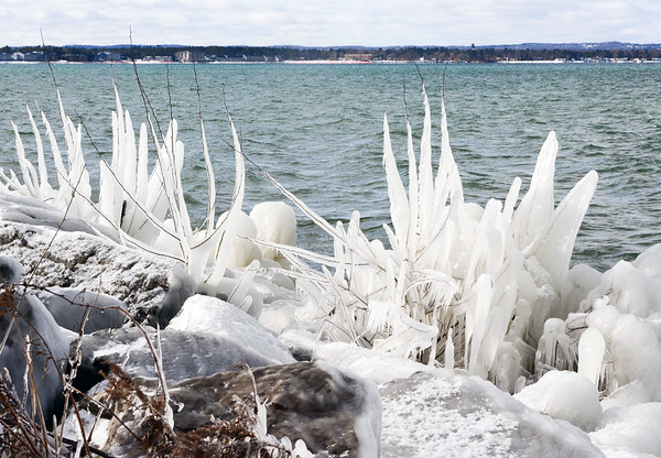 Ice coats the vegetation along East Grand Traverse Bay. Photo by George Hermach.