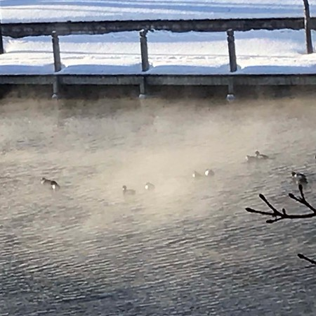 Morning steam rises from the Boardman River. Photo by Priscilla ware.