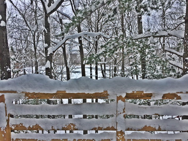 Snow laden deck railing in Lake Ann. Photo by Meg Benner.